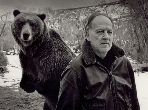 """Grizzly man"" Werner Herzog (2005) by Majo Rossi"